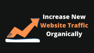 Read more about the article How To Increase New Website Traffic Organically 2021