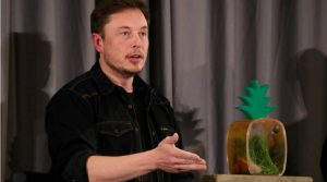 Read more about the article Use Signal, says Elon Musk after WhatsApp privacy policy change